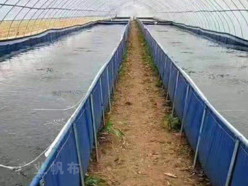 支架养殖帆布鱼池
